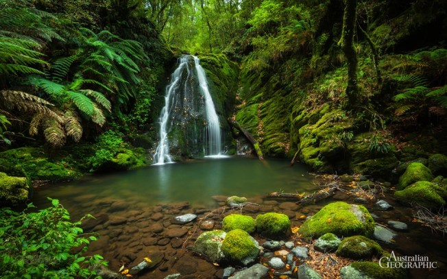 Cascades-Track-New-England-NP-NSW
